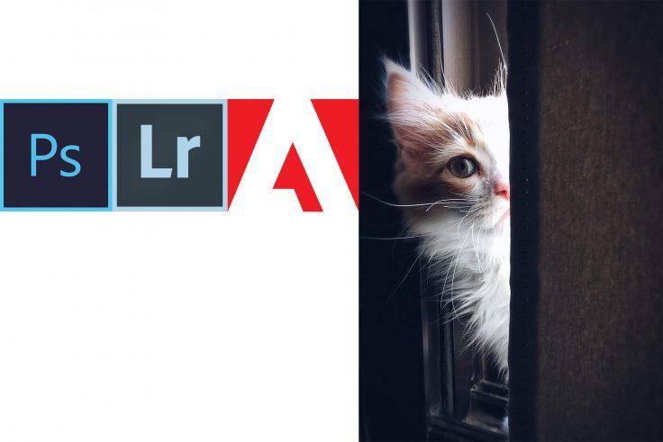 9.90 czy 19.99 czyli o cenach w Adobe 9